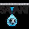 www.savantlab.com